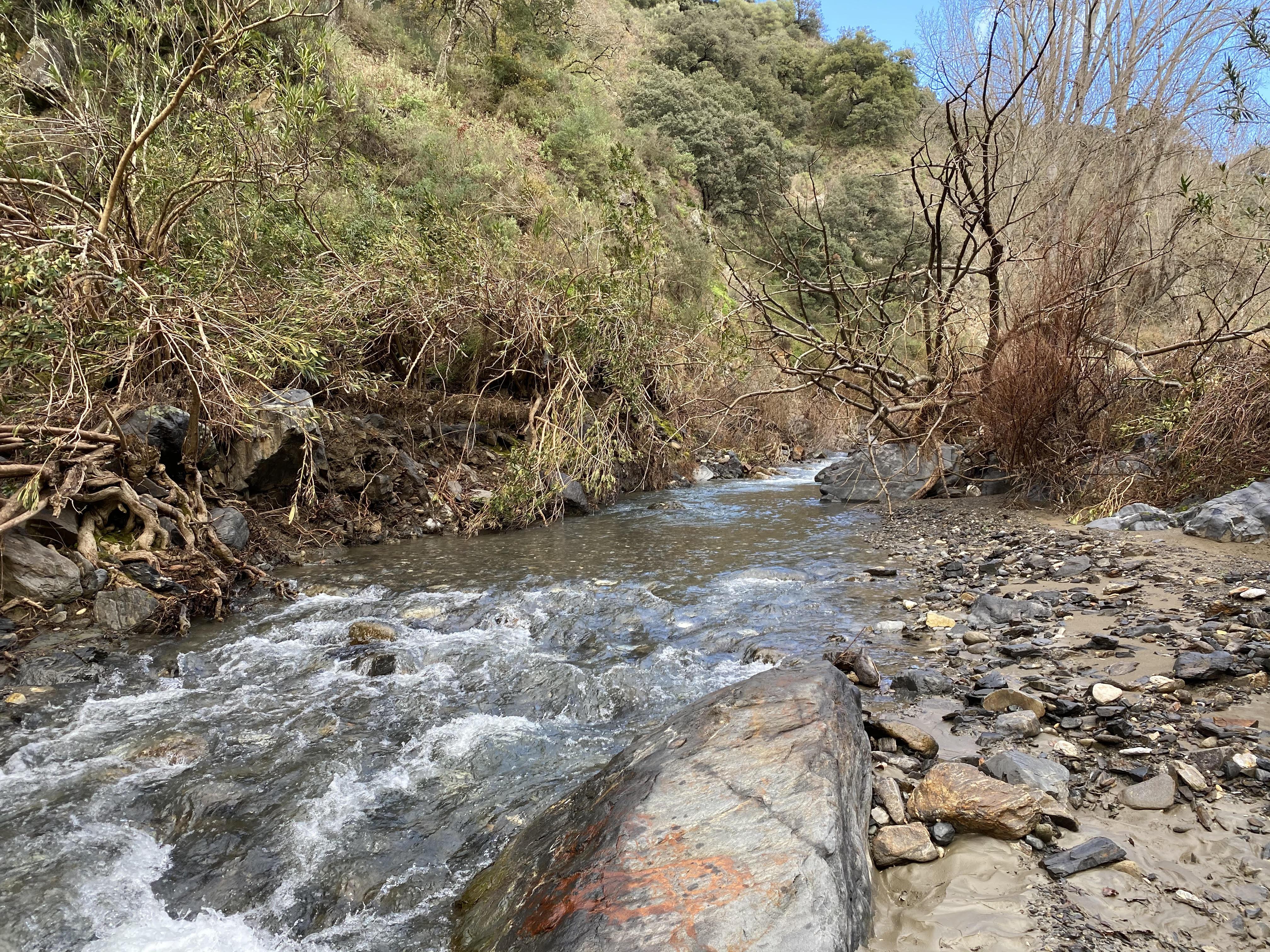 WP2 sampling the Genal River in Spain. Photos: N. Bonada