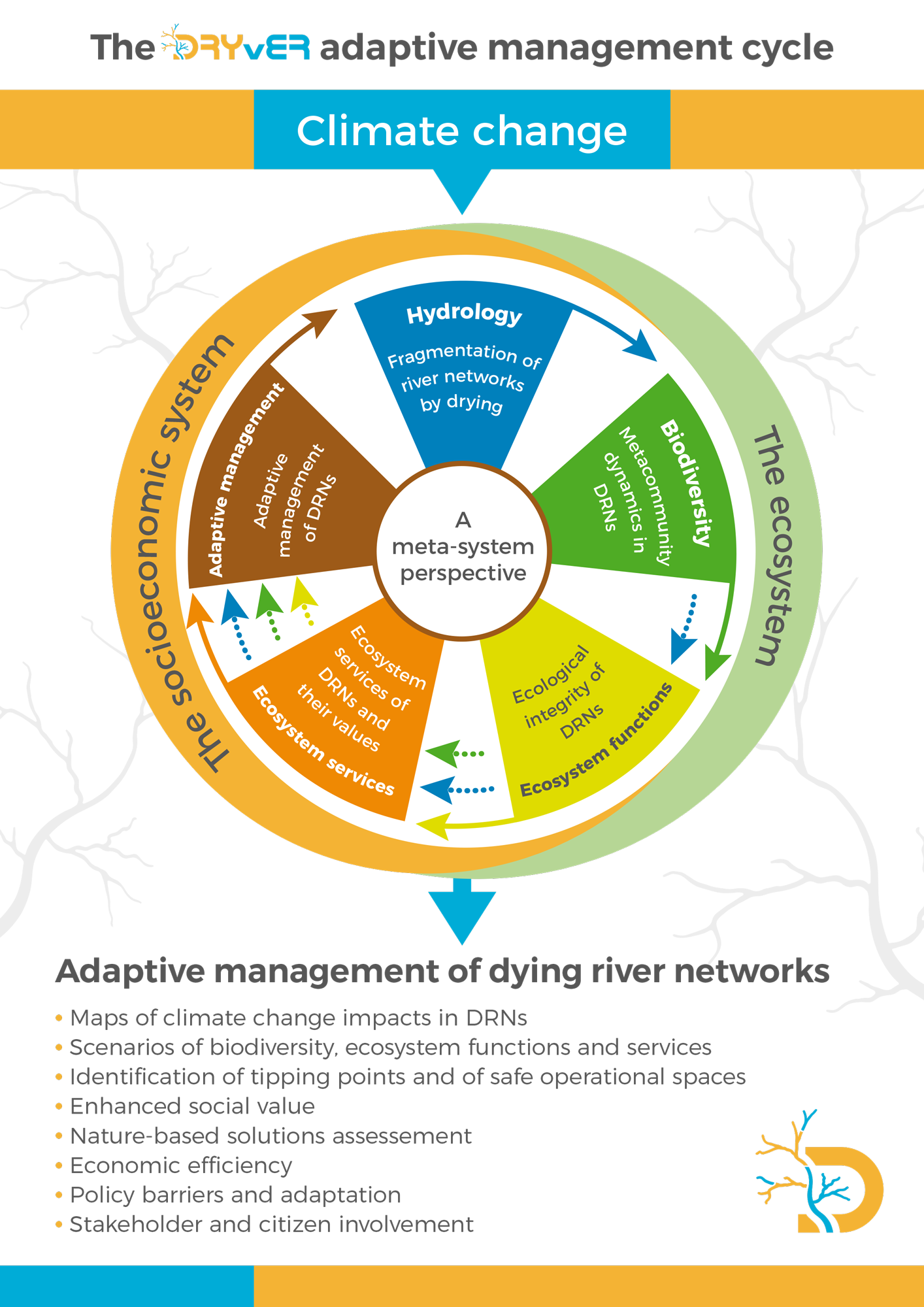Adaptive management of dying river networks